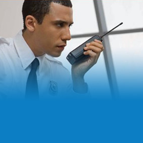 Training Course Hot Deal